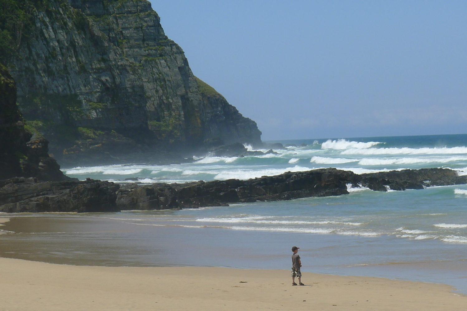 Dzikie Wybrzeże i wzburzony ocean