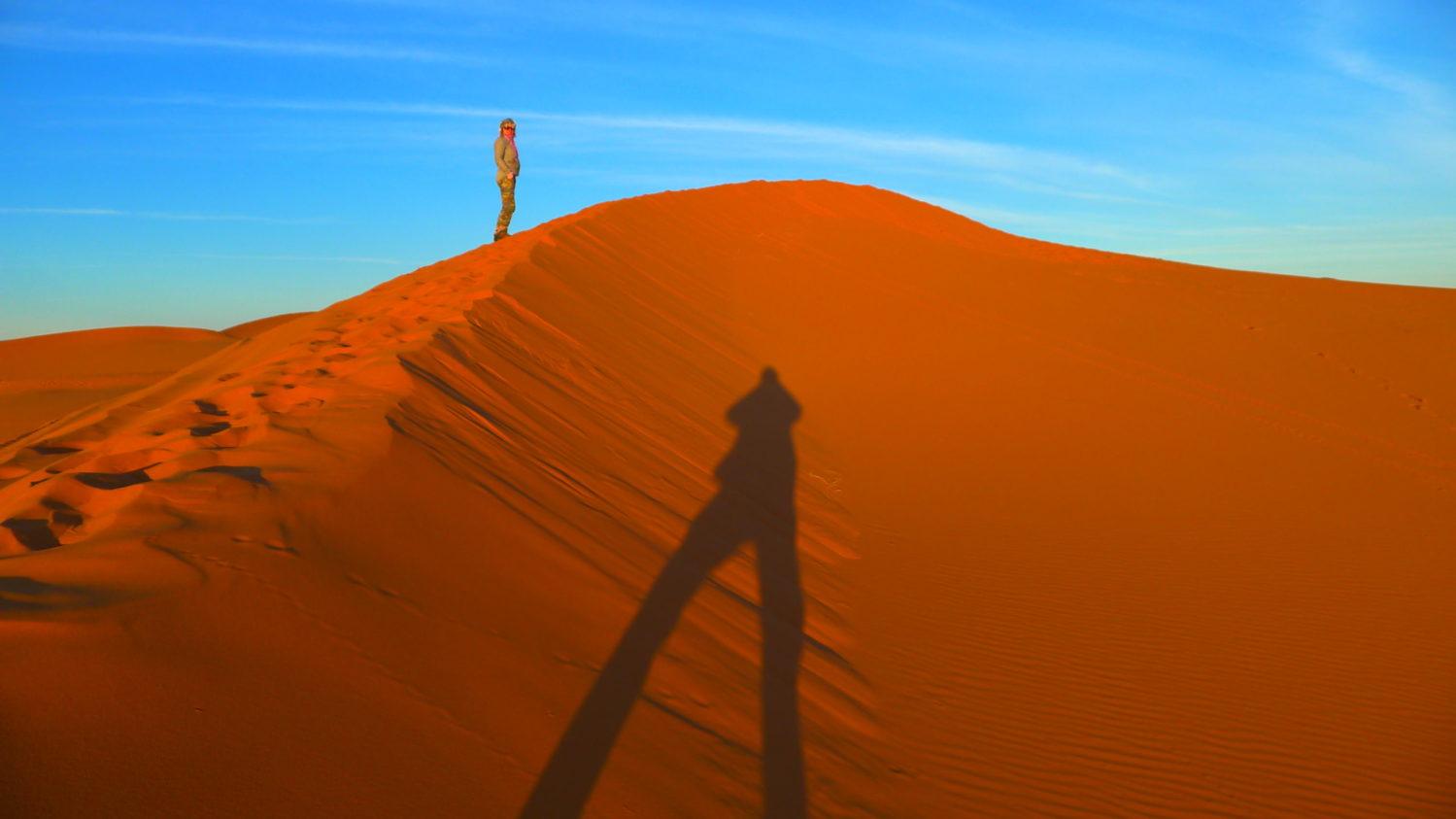 Wydma na Saharze