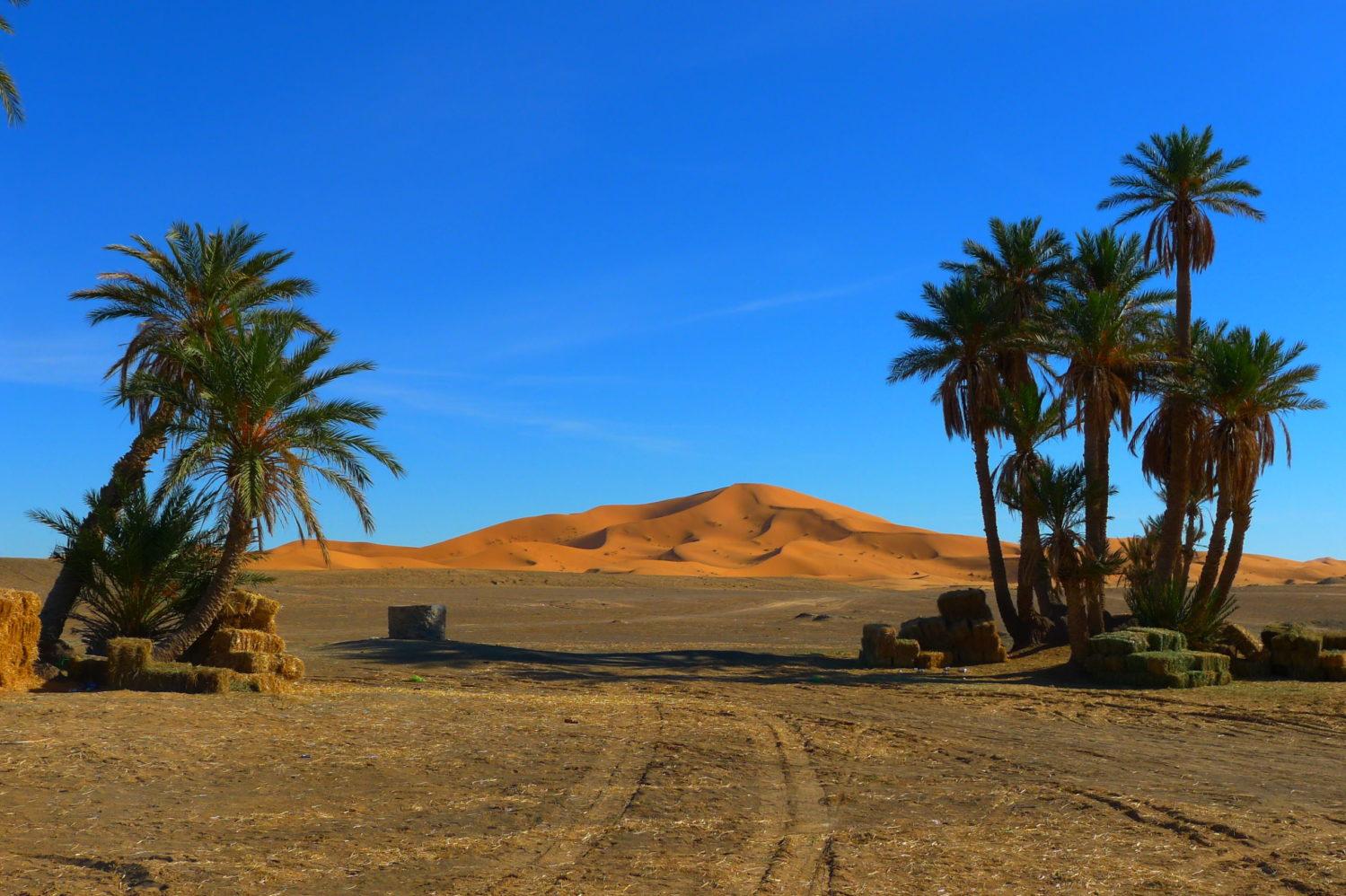 Erg Chebbi, największa wydma w Maroku