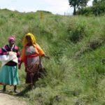 Kobiety Xhosa , Dzikie Wybrzeże