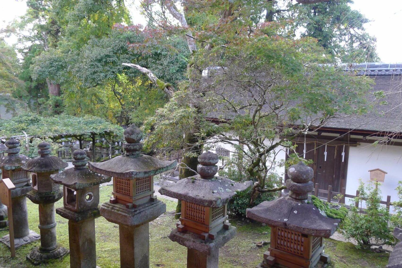 Niesamowite miejsce latarnie wotywne Nara, Japonia