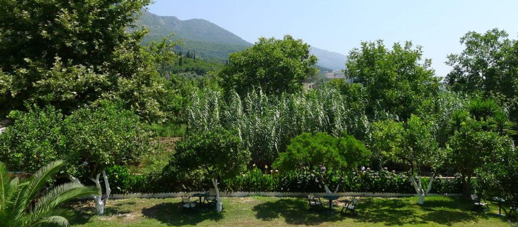 Zielone wzgórza Epiru