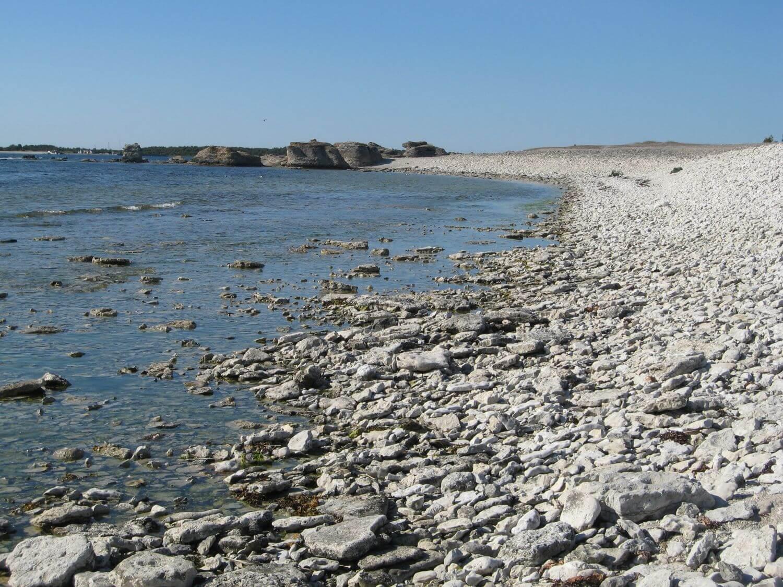 Kamienista plaża na Faro
