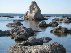 Raukary Gotlandia