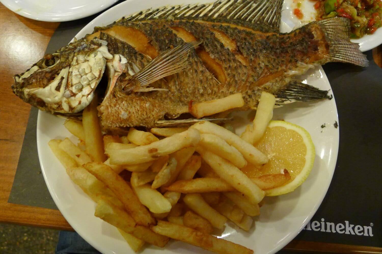 Ryba Świętego Piotra