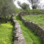 Urocze kamienne ścieżki, Naxos Cyklady